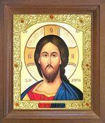 Спаситель. Икона в деревянной рамке с окладом (Д-26псо-21)