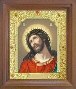 Спаситель в терновом венце. Икона в деревянной рамке с окладом (Д-25псо-23)
