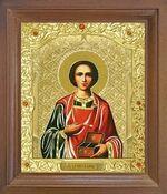 Пантелеймон. Икона в деревянной рамке с окладом (Д-25псо-48)