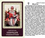 Святитель Спиридон Тримифунтский (трон).