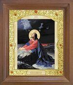 Моление о чаше. Икона в деревянной рамке с окладом (Д-26псо-81)