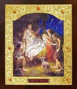 Рождество Христово. Икона в окладе средняя (Д-21-89)