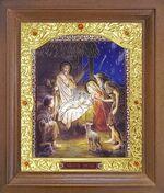 Рождество Христово. Икона в деревянной рамке с окладом (Д-26псо-89)