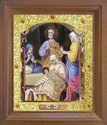 Рождество Пресвятой Богородицы. Икона в деревянной рамке с окладом (Д-26псо-93)
